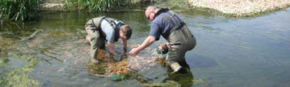 Environment Agency – Sediment Sampling Assessment