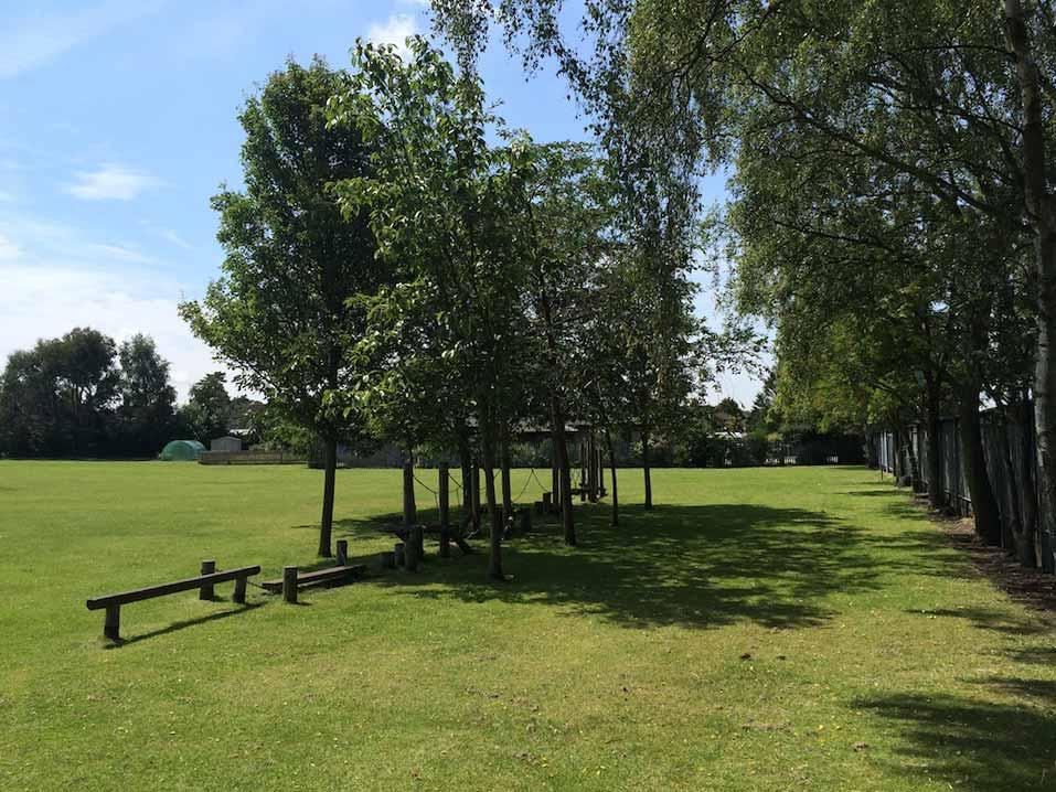 St Marthas boundary tree line
