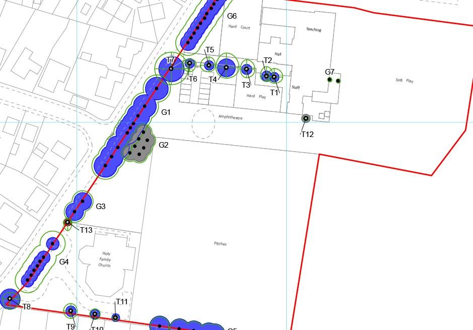 St Marthas constraints map