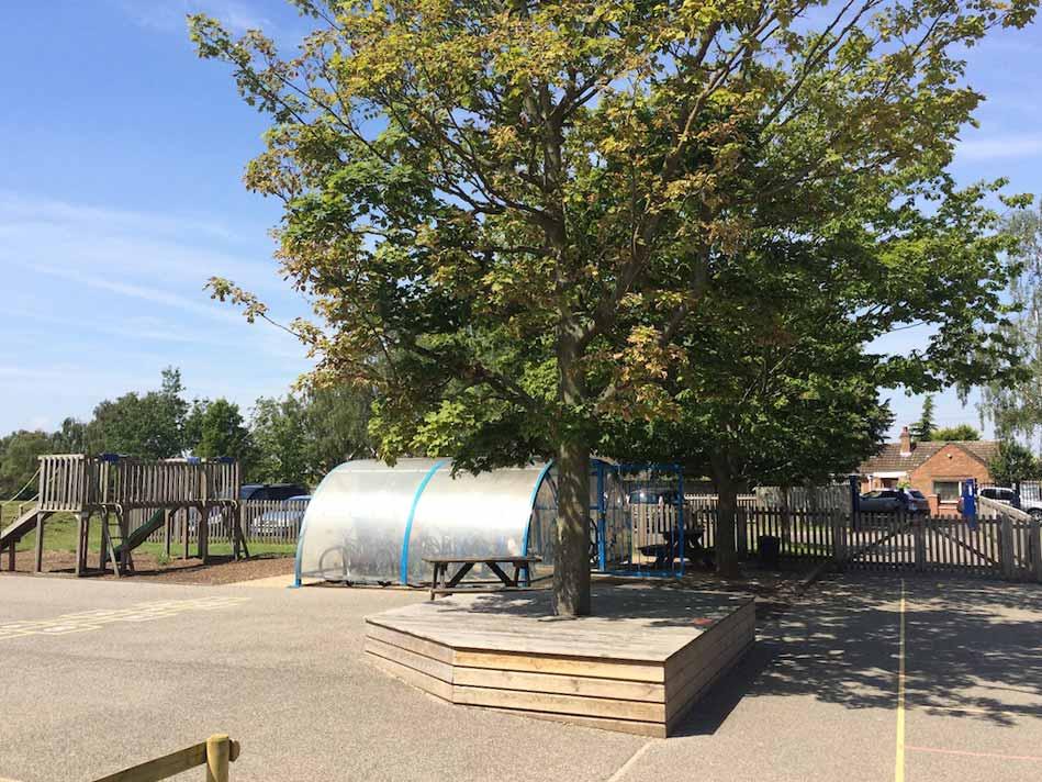 St Marthas playground tree
