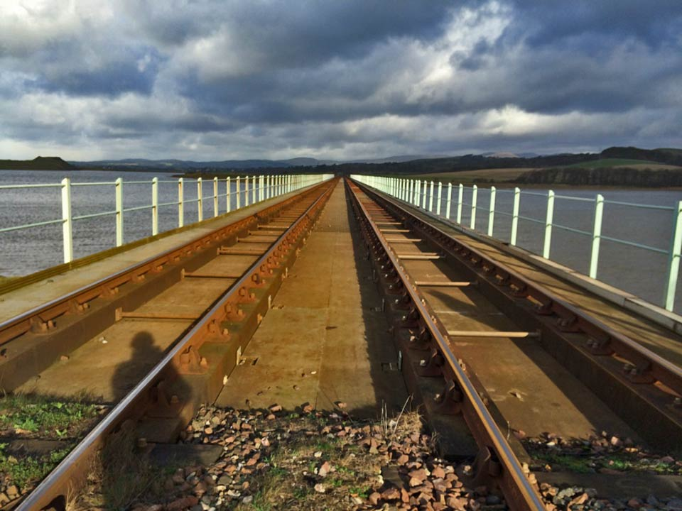 Ecology Link Rail projects renewal including Eskmeals Viaduct (Natterjack Toads and GCN)