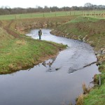 River Welland bank restoration - before