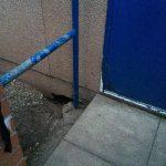 Sett entrance next to classroom door