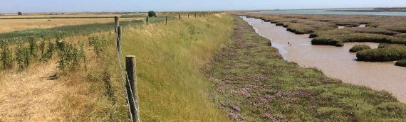 Suffolk Estuary Flood Protection Scheme